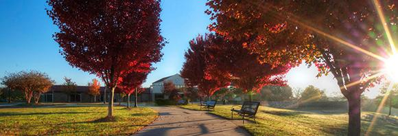 Sherman College campus in the fall