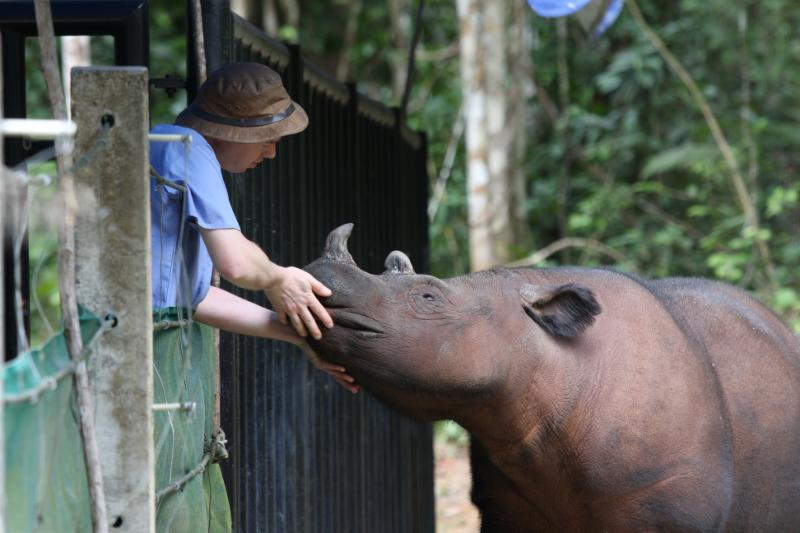 Veterinarian with Rhino