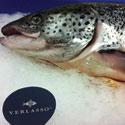 Verlasso salmon