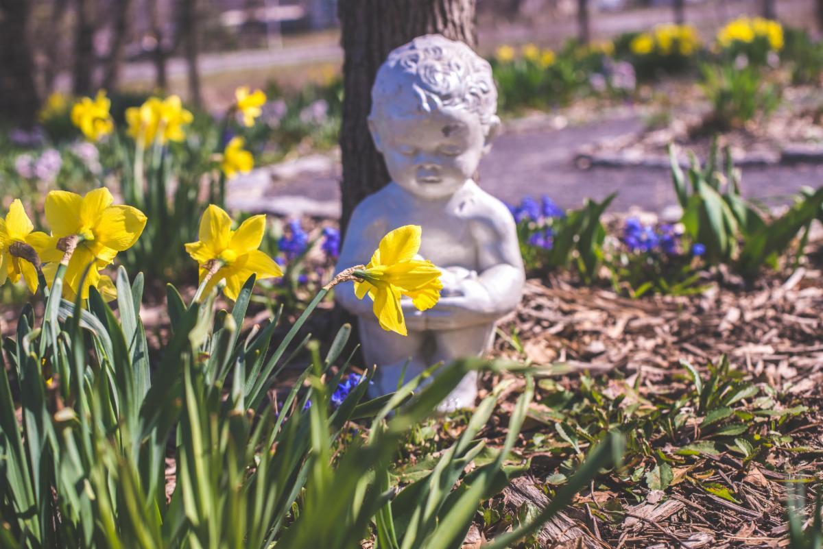 Bulb labyrinth memorial garden at ICG