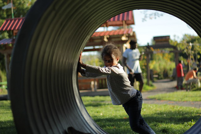 A young child stands inside of a large circular tube and pushes it from the inside.