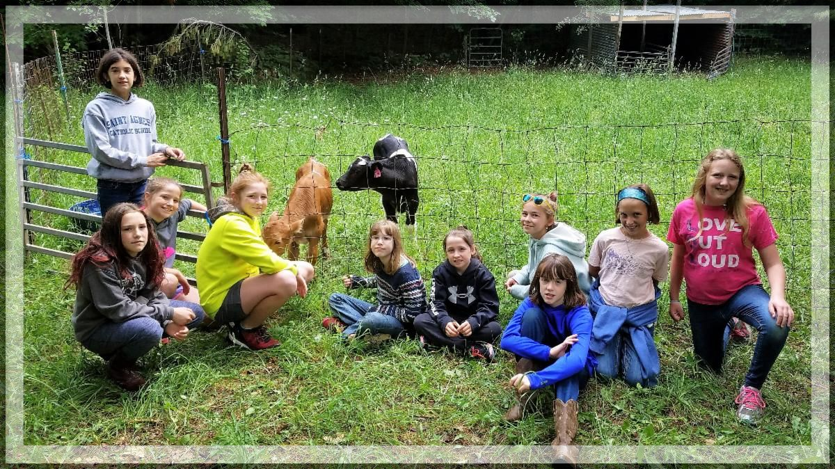CSM girl campers spending time with our calves.