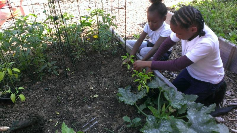 Creating a garden at the Boys and Girls Club of Chester
