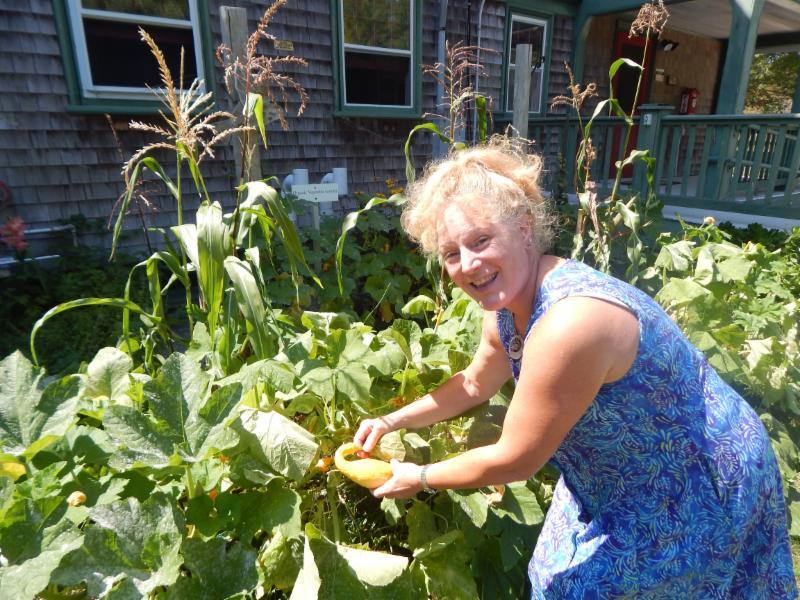 Volunteer Ann Gurek tending to our garden.