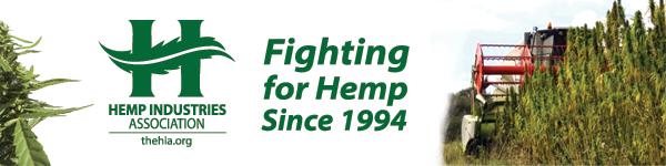 american hemp oil, hemp buds for sale usa, cbd hemp buds for sale, buy hemp buds online,