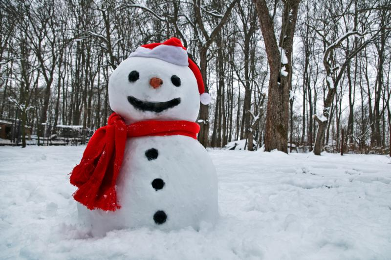 Snow man with a red hat and scarf in a snowy field