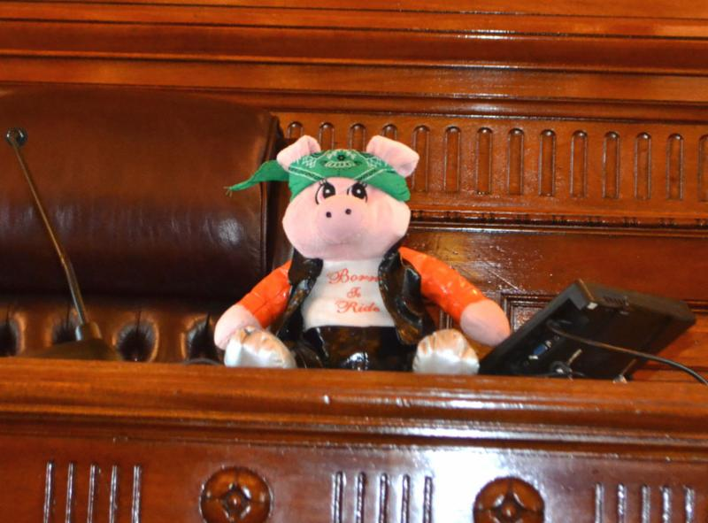 Rowdy Rodge- a stuffed animal pig- sits on the Senate President's desk in the Capital during the KSYLF.