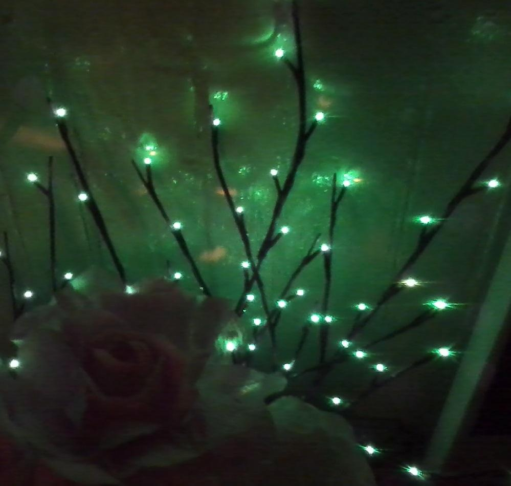 Emerald Light Branch