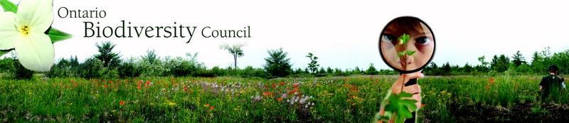 Ontario Biodiversity Council