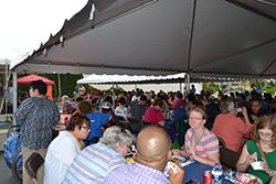 gathering of people under canapies having lunch