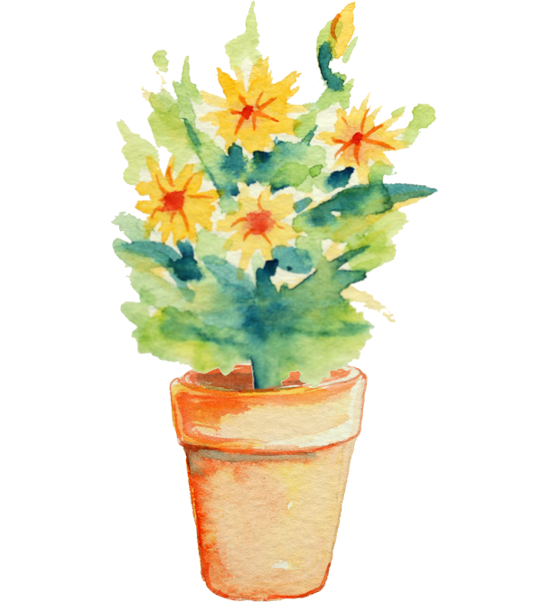 potted yellow flower