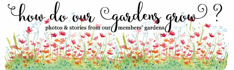 How do our gardens grow header