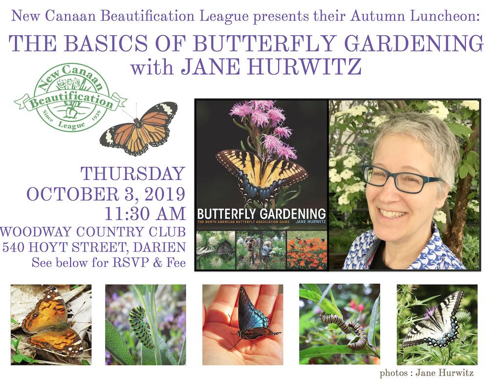 Jane Hurwitz program header