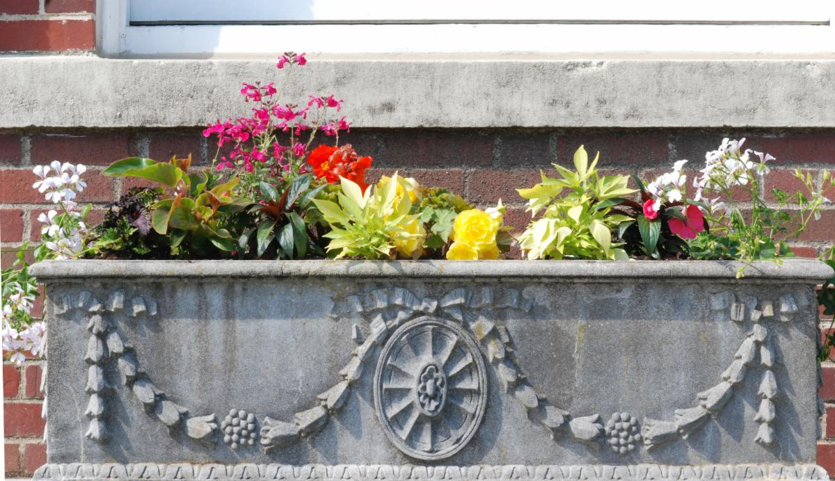 town hall old planters 2021