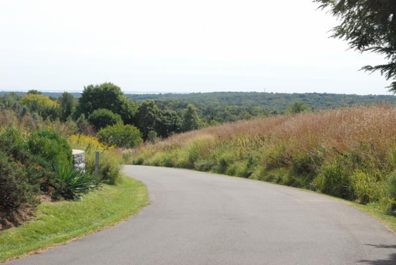 Meadow Walk View