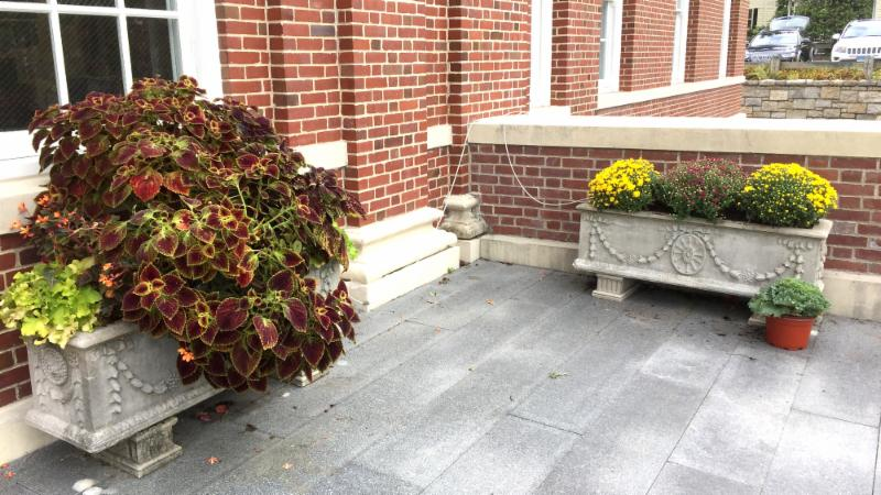 Town Hall steps fall 2018
