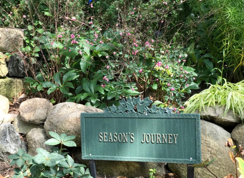 Season's Journey
