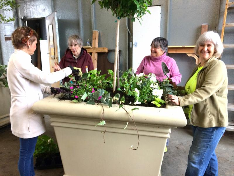 Town Planters 2017