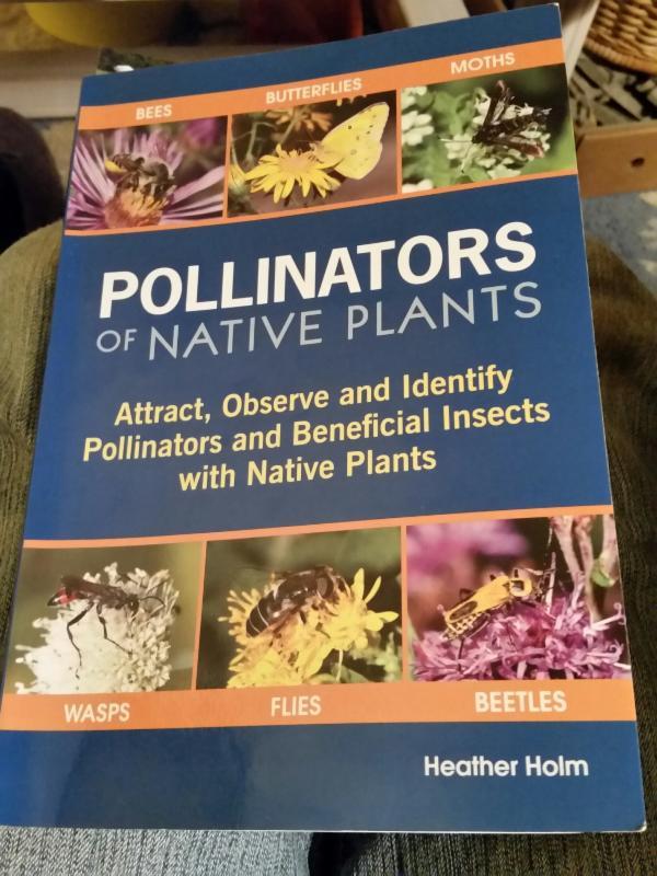 Pollinators book
