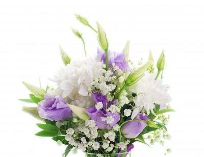 White Purple Flowers