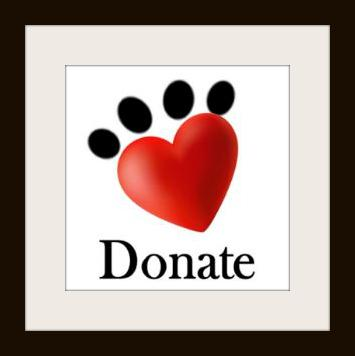 Healing Paws Donations
