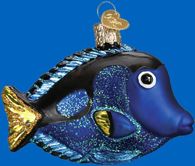Old World Pacific Blue Tang