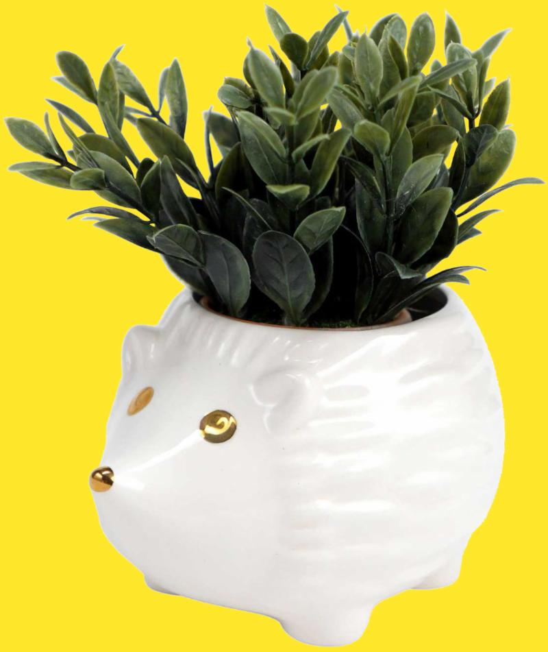 White Hedgehog Planter