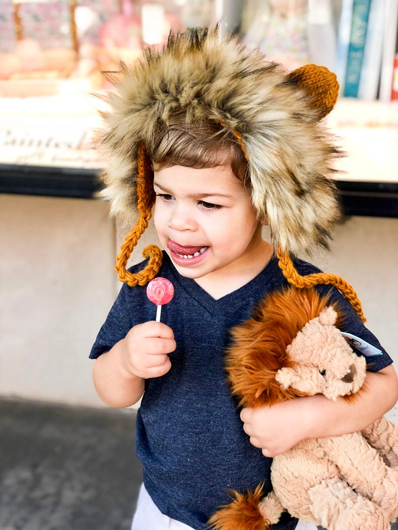 Knitted Lion Hat