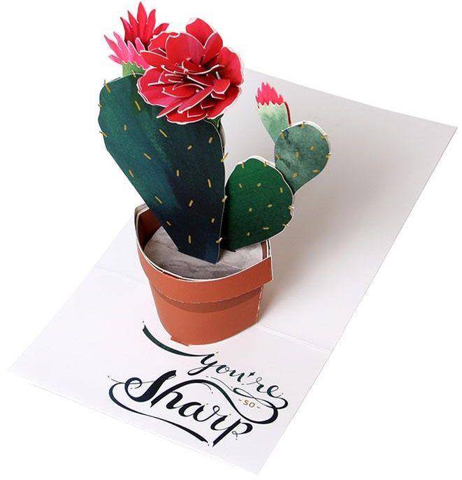 Flowering Cactus Pop Up Card