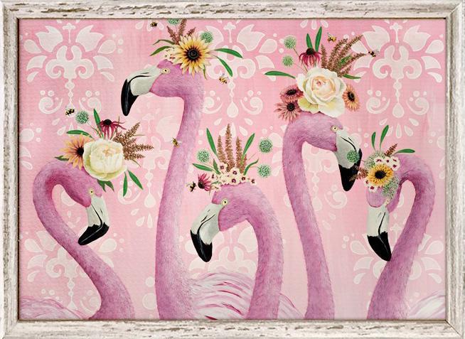 Flamingos - 7x5