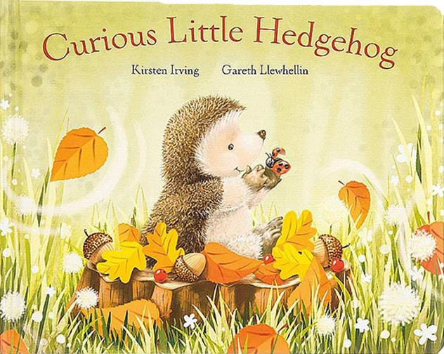 Jellycat - Curious Little Hedgehog