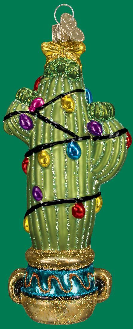 Old World - Christmas Cactus