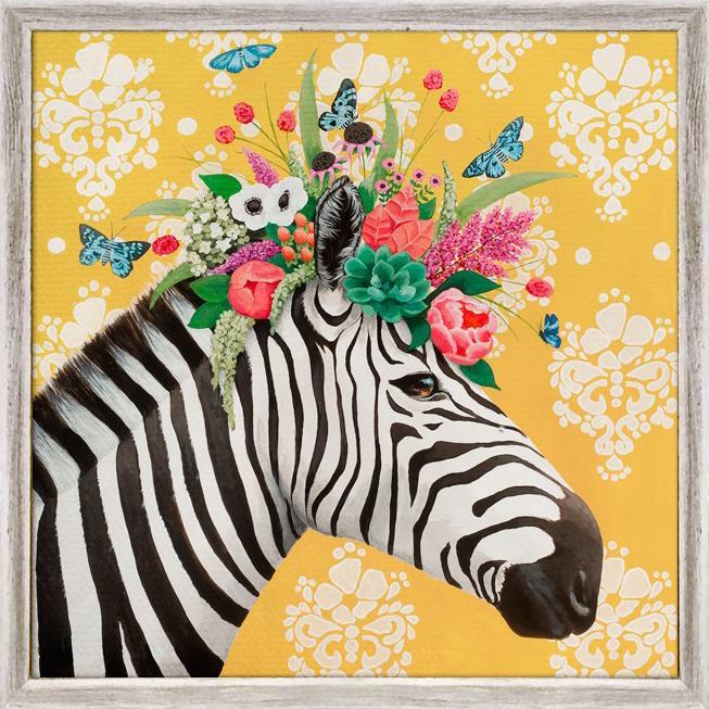 Zebra - 6x6
