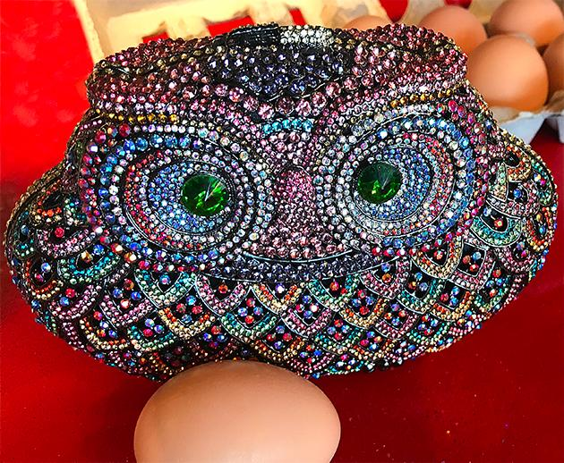 Jeweled Owl Evening Bag