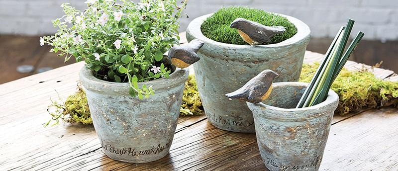 Sparrow Pots - Set of 3