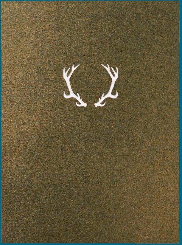 Pop-Up Deer Card