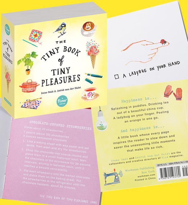 Book - Tiny Little Treasures