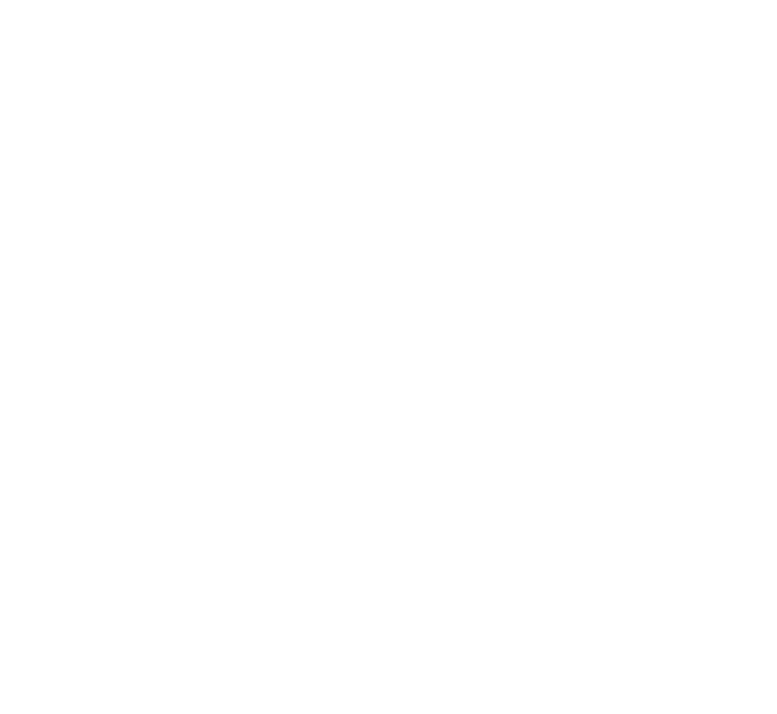 NV logo white png