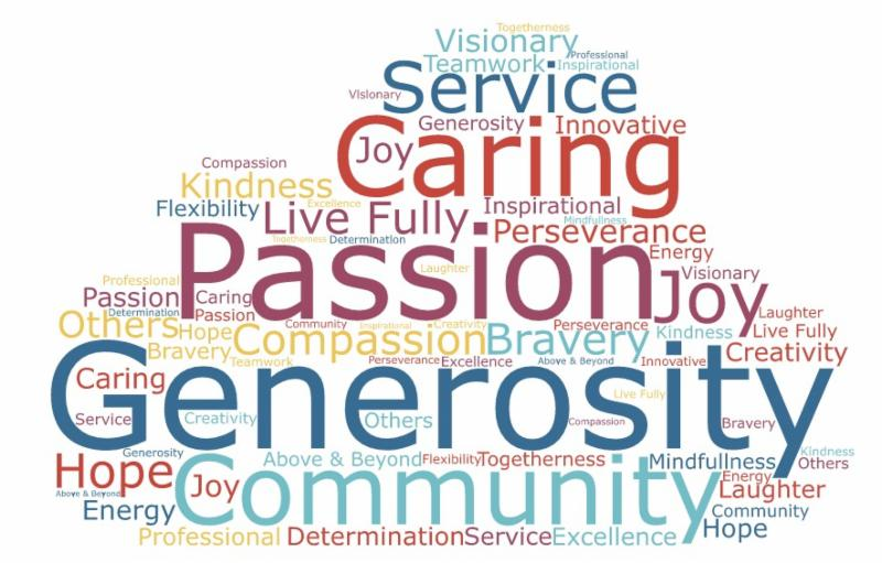 The Village Chicago word cloud_ 2017