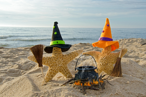 starfish on the beach with witch s hats and brooms