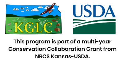 transparency of usda and kglc horizontal