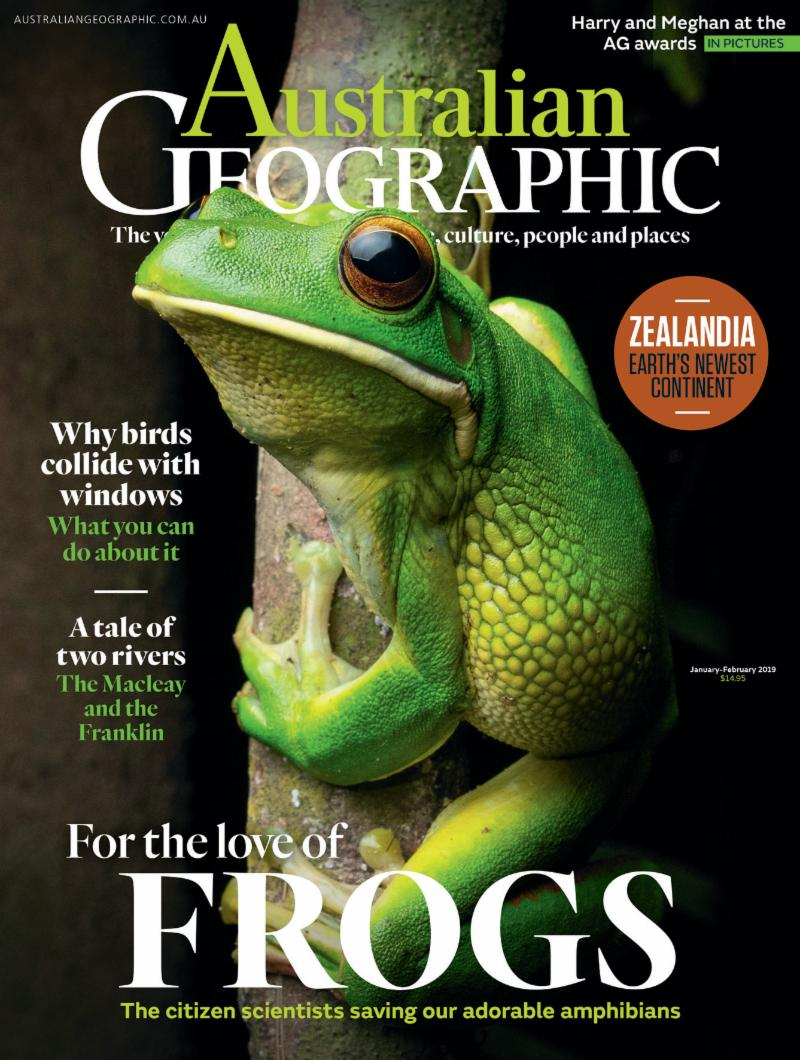 Australian Geographic Magazine cover with image of white lipped tree frog by Skyrail Ranger Tim Hackwood