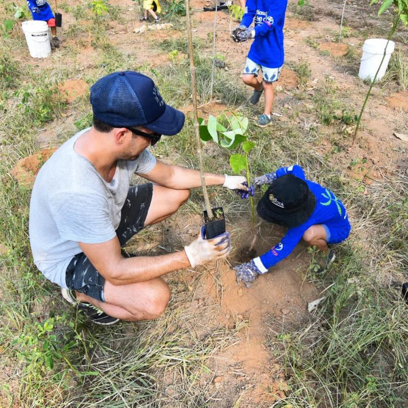Cairns locals planting trees on Tropical Tree Day
