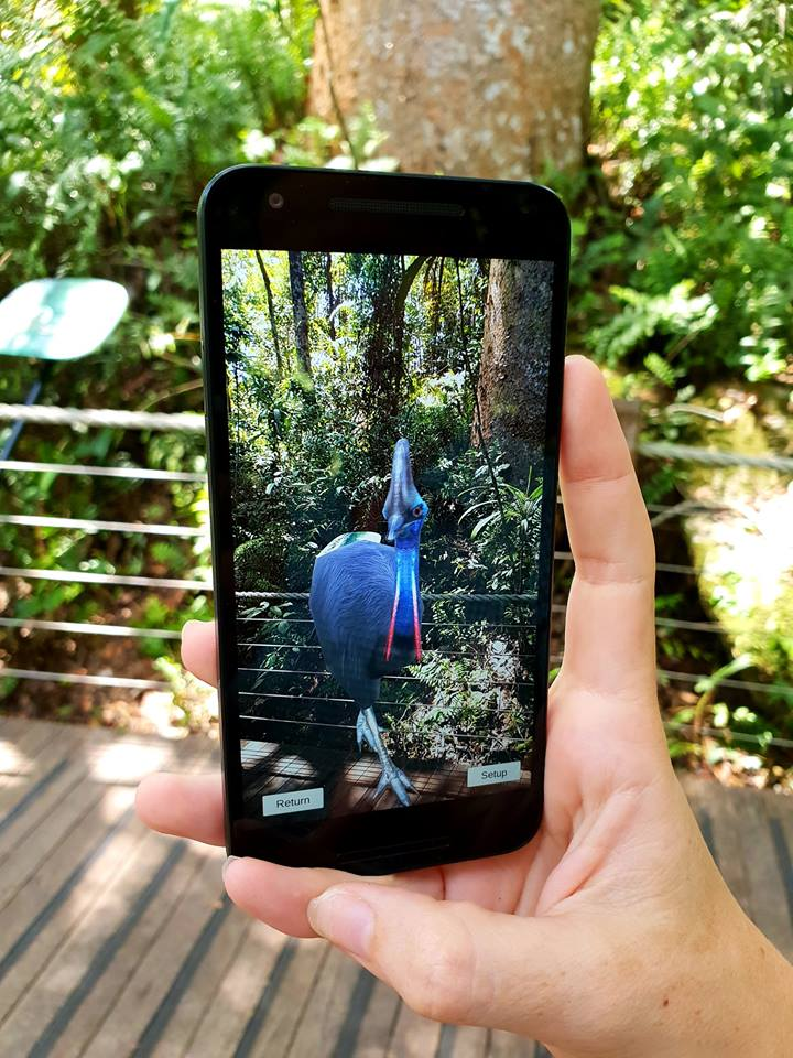 AR Cassowary showing on the Skyrail Interpretive App and Audio Guide at Red Peak Station