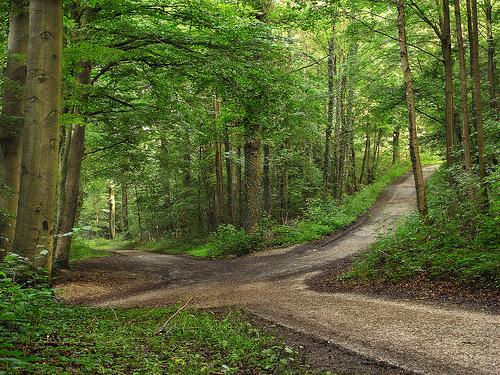 crossroads w green trees
