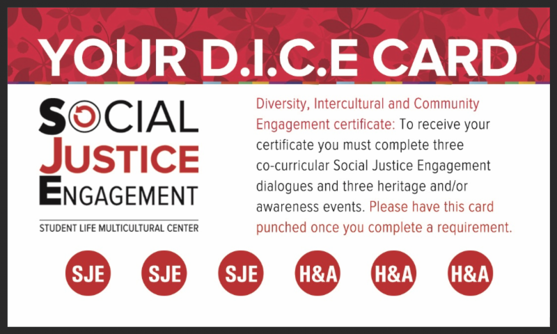 Your D.I.C.E. Card Social Justice Engagement