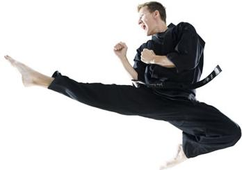 karate-jump.jpg