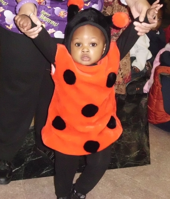 Halloween Lady Bug Picture