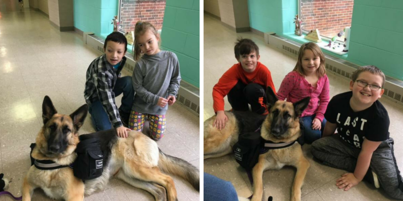 Sydney the therapy dog with students