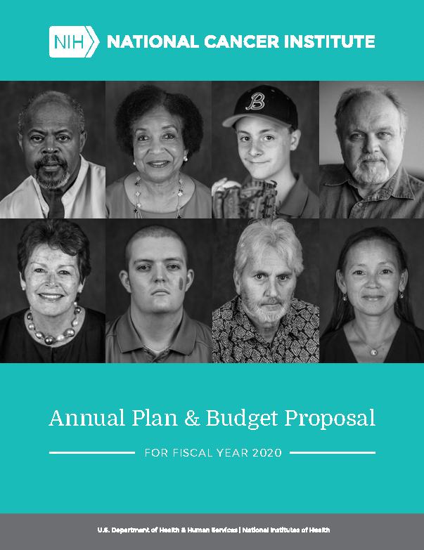 NCI 2020 Budget Plan